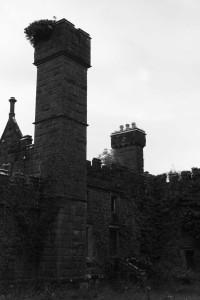 CastleSaunderson447